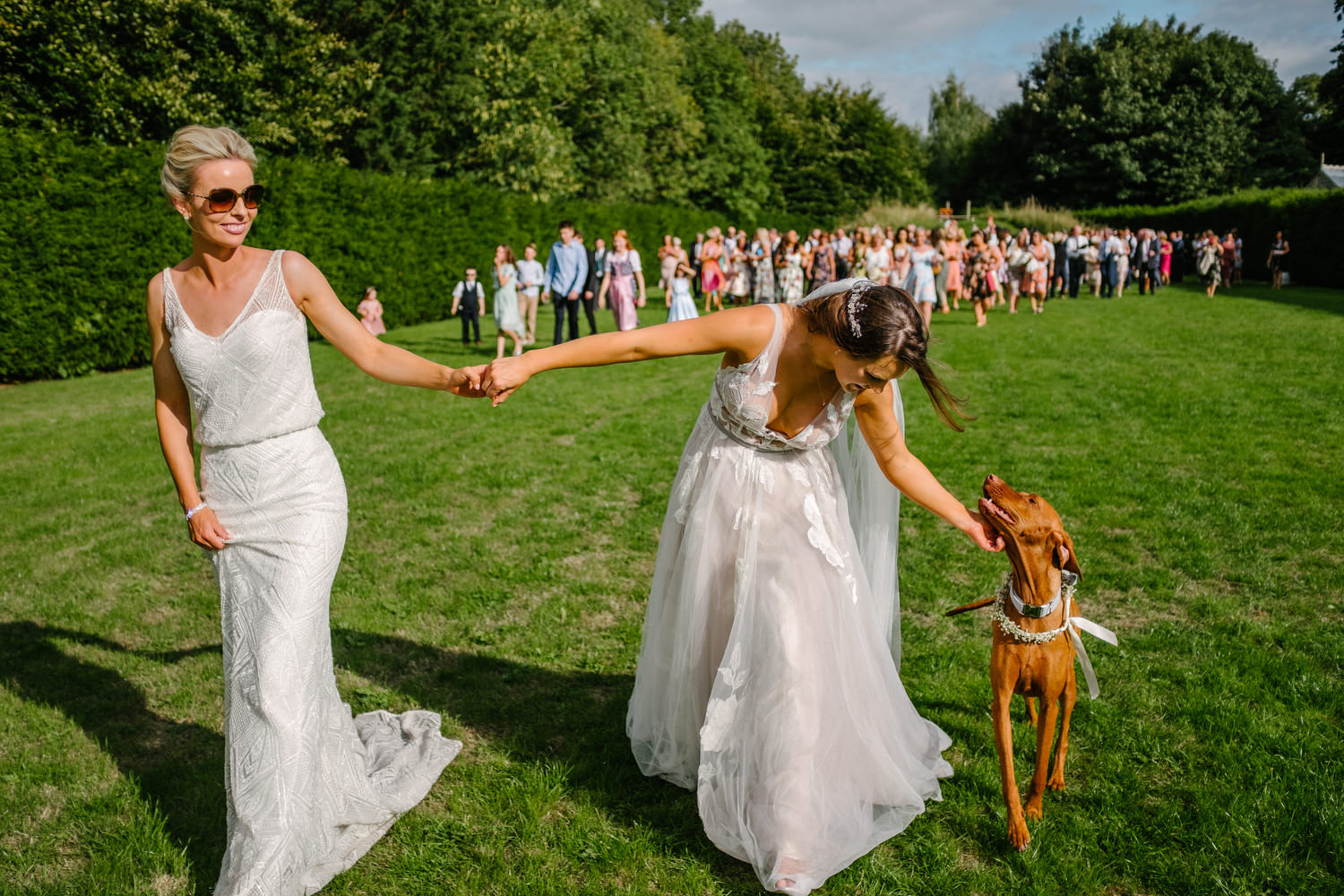 dmp0698_guests_indian_samesex_ballintubbert_house_twobrides_crowd_fun_dogs_tent_wedding